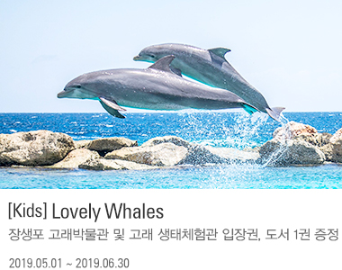 [Kids] Lovely Whales