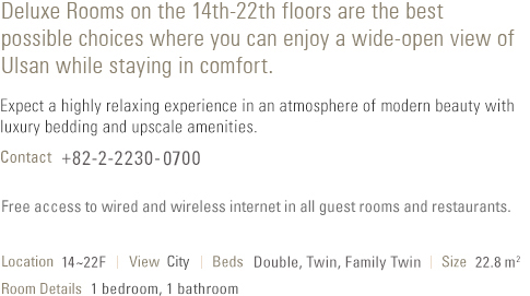 About Deluxe Room (see below)